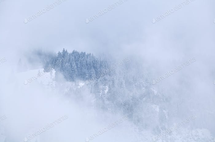mountain top in winter fog