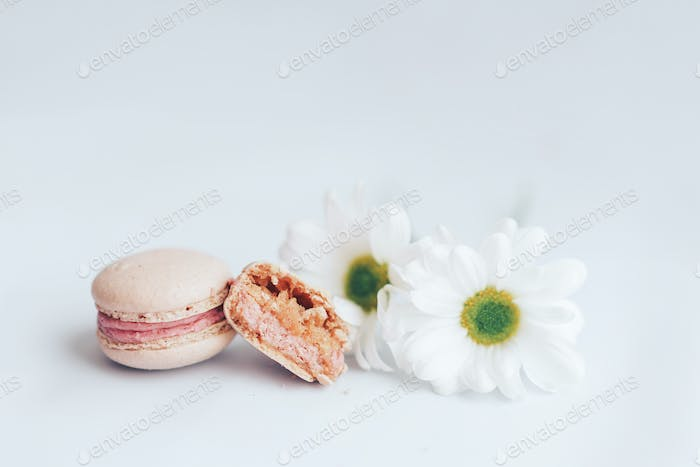 Two pink macaroons, one whole and the other broken in half. Next to the macaroons are two white buds
