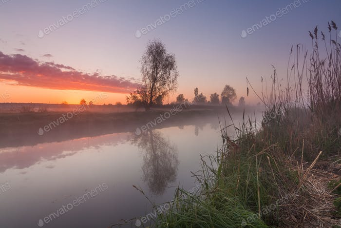 Foggy sunrise over the lake in spring