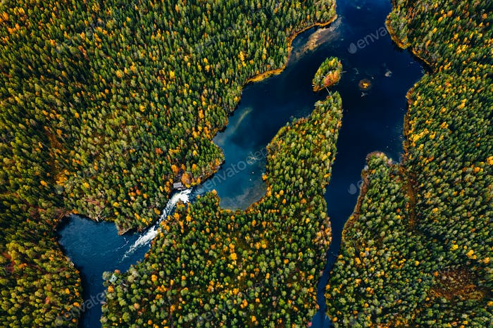 Aerial view of blue rivers and lakes in beautiful orange and red autumn forest, Finland.