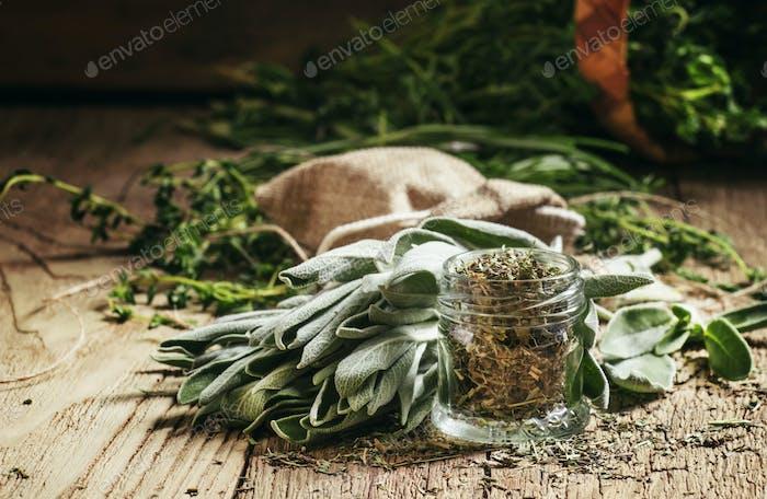 Dried sage in a glass jar, fresh sage