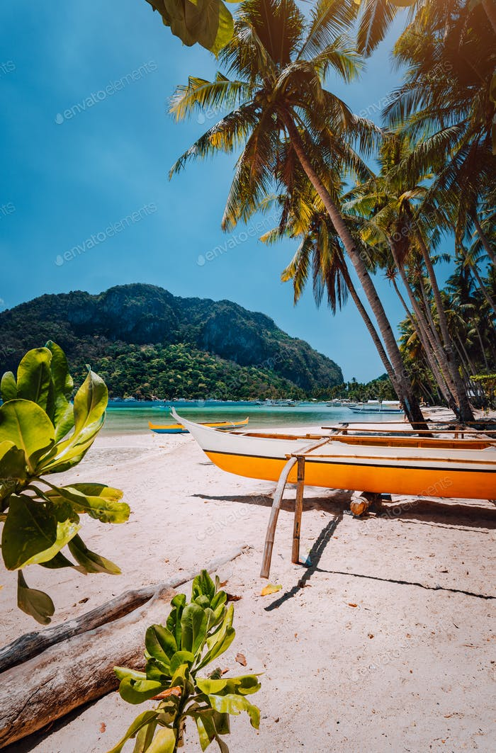 Banca boats under palm trees on sandy beach in Corong corong, El Nido, Palawan, Philippines