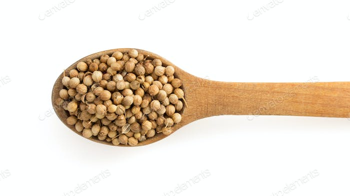 coriander spices in spoon