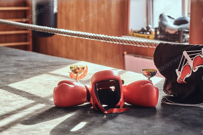 Prizers for boxing competition on sunny ring