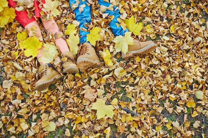 Tumbado sobre las hojas