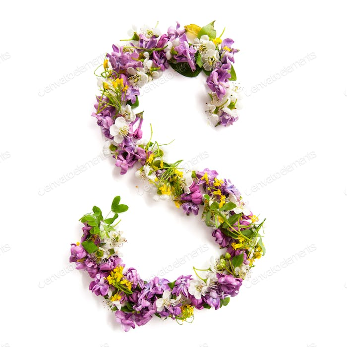 The letter «S» made of various natural small flowers.