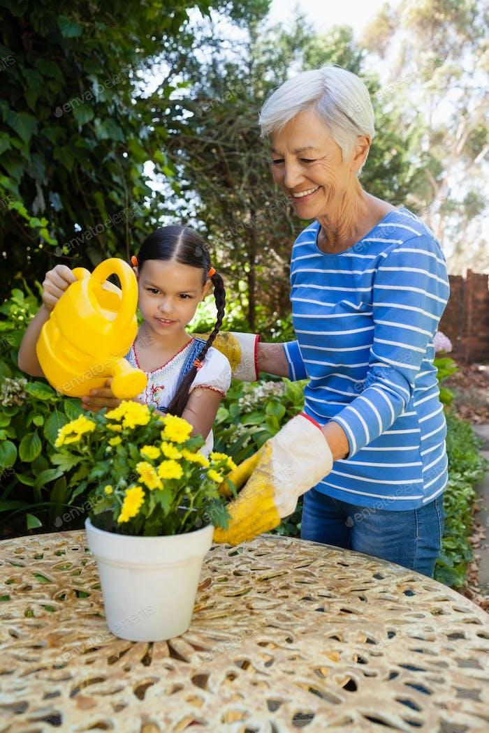 Lächelnde Senior Frau stehend von Enkelin Bewässerung gelben Blumen auf dem Tisch