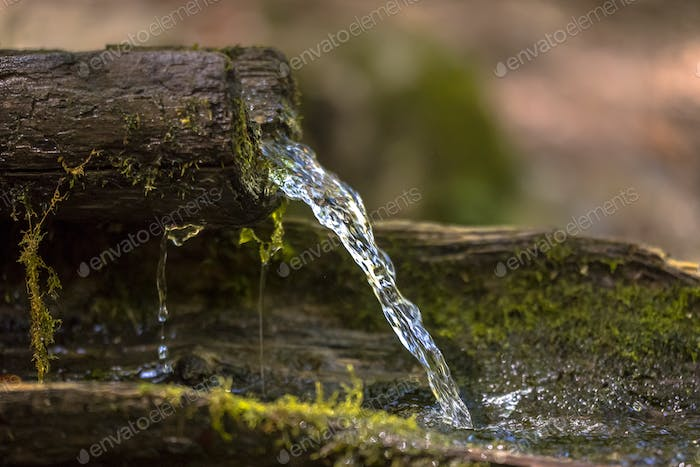 Mountain water spring