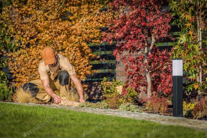 Fall Season Garden Works