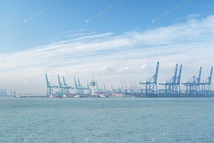 the port of tianjin