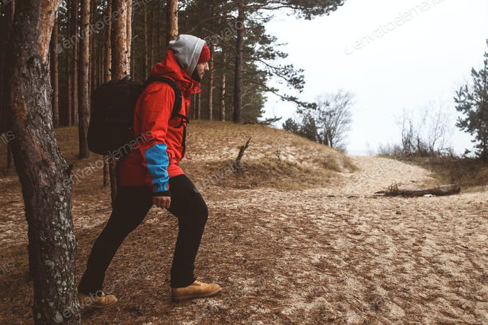 Hiker in the forest