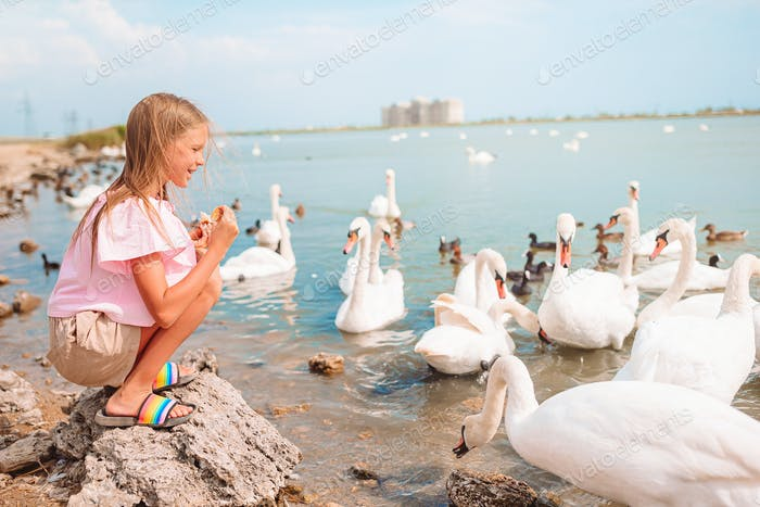 Little girl sitting on the beach with swans