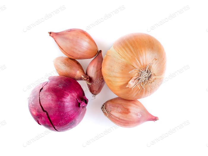 Set of different onions - shallots, red onion on white background, bulbs, top view
