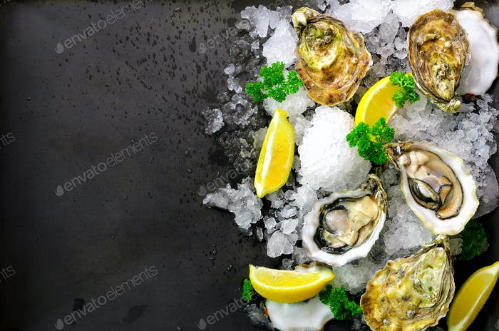 Fresh opened oysters, lemon, herbs, ice on dark metal background. Top view, copy space