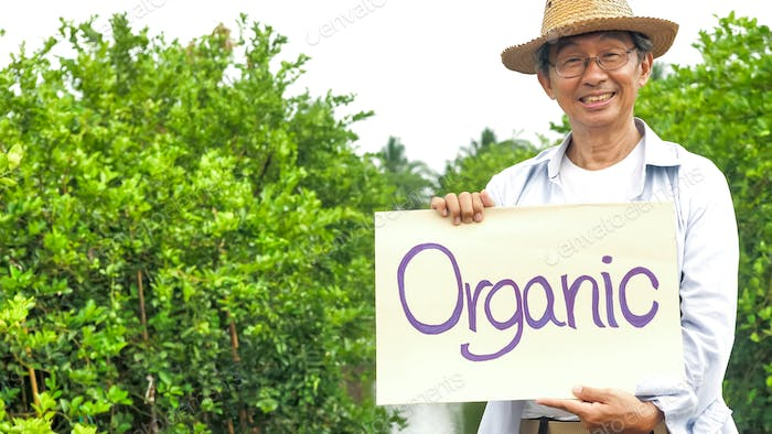 Happy farmer smiling and standing in organic farm.