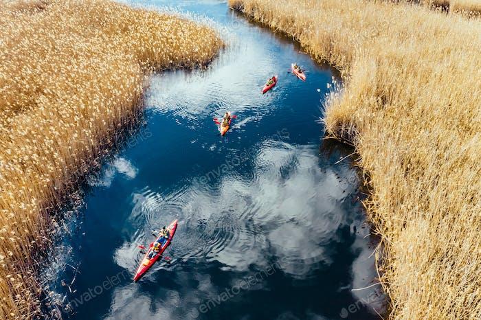Gruppe von Menschen in Kajaks unter Schilf auf dem Herbst Fluss