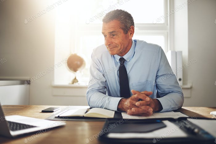 Mature businessman sitting in an office working with a laptop
