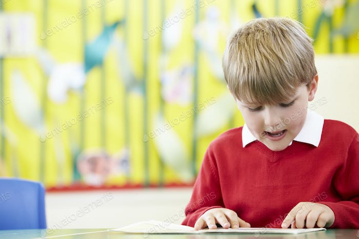 Male Pupil Reading Book At Table