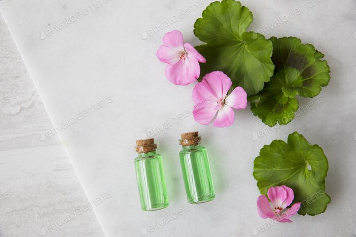 Plant Extract and Geraniums Flat Lay