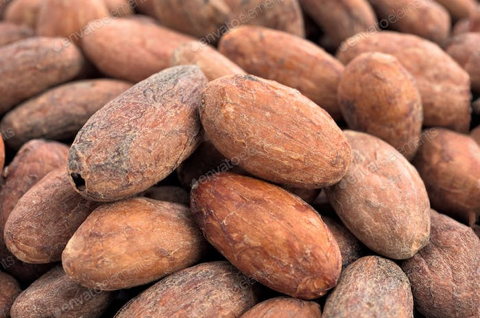 group of cocoa beans
