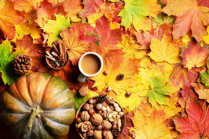 Big pumpkin, wooden bowl of nuts, coffee cup, cone, cinnamon over beige plaid and colorful leaves