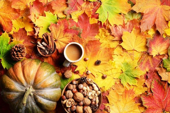 Großer Kürbis, hölzerne Schüssel mit Nüssen, Kaffeetasse, Kegel, Zimt über beige kariert und bunten Blättern