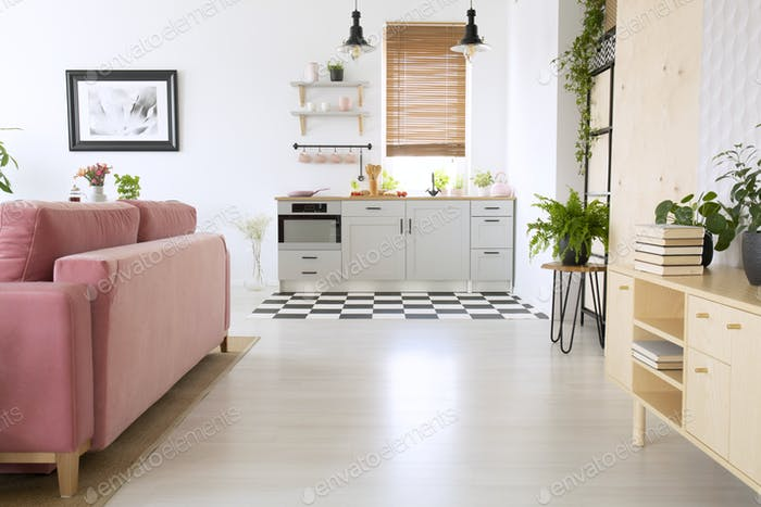 Wooden cupboard and pink sofa in bright flat interior with kitch