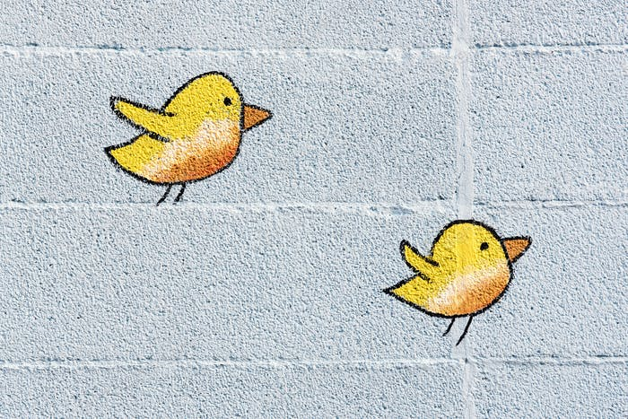 Two cute little yellow birds on a wall