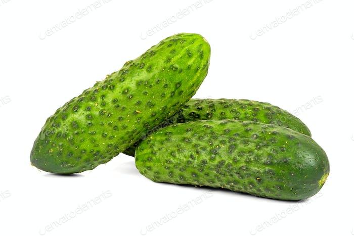 Fresh cucumbers on white background