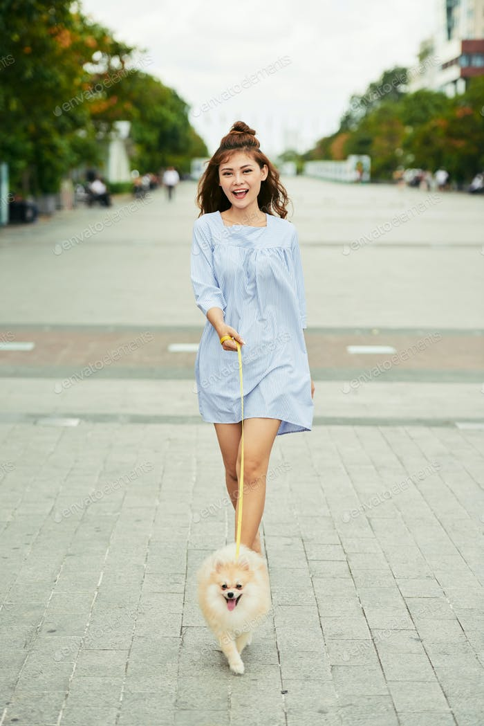 Walking with spitz