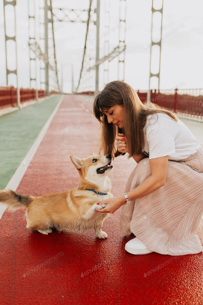 Happy young woman playing with corgi on the bridge in sunlight, summer vacation.