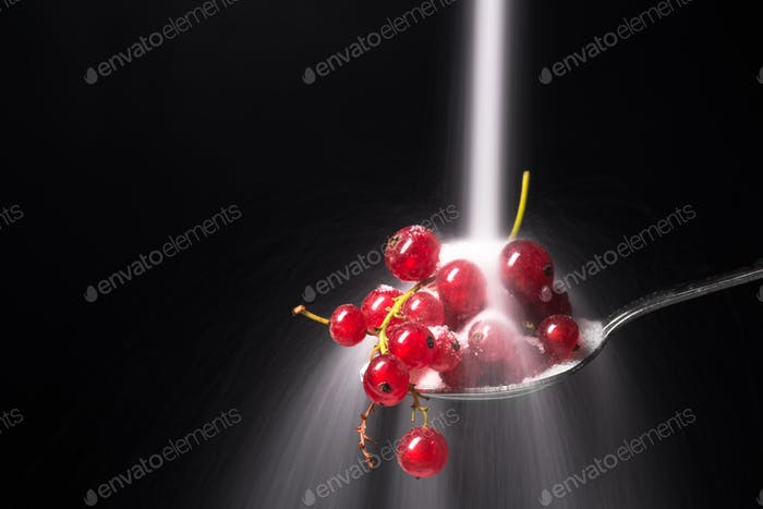 Currant with blueberries isolated over black background.