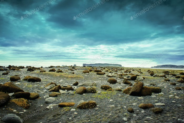 Iceland nature beautiful landscape background empty field with lava and rock