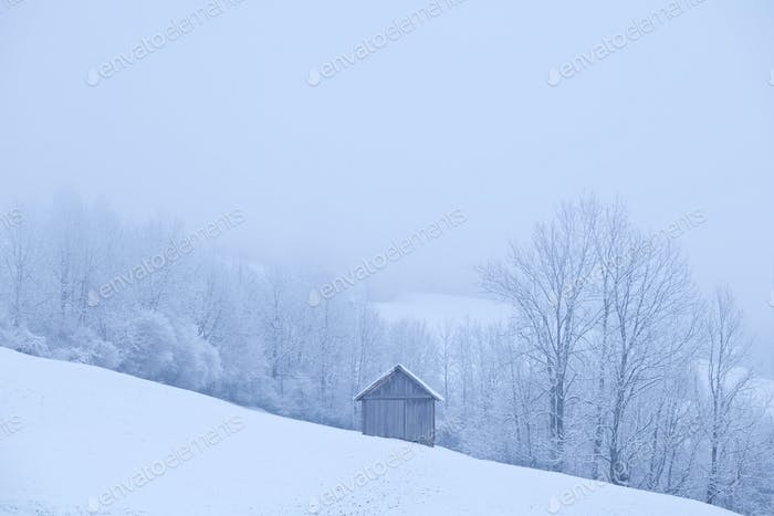 wooden hut during frosty morning