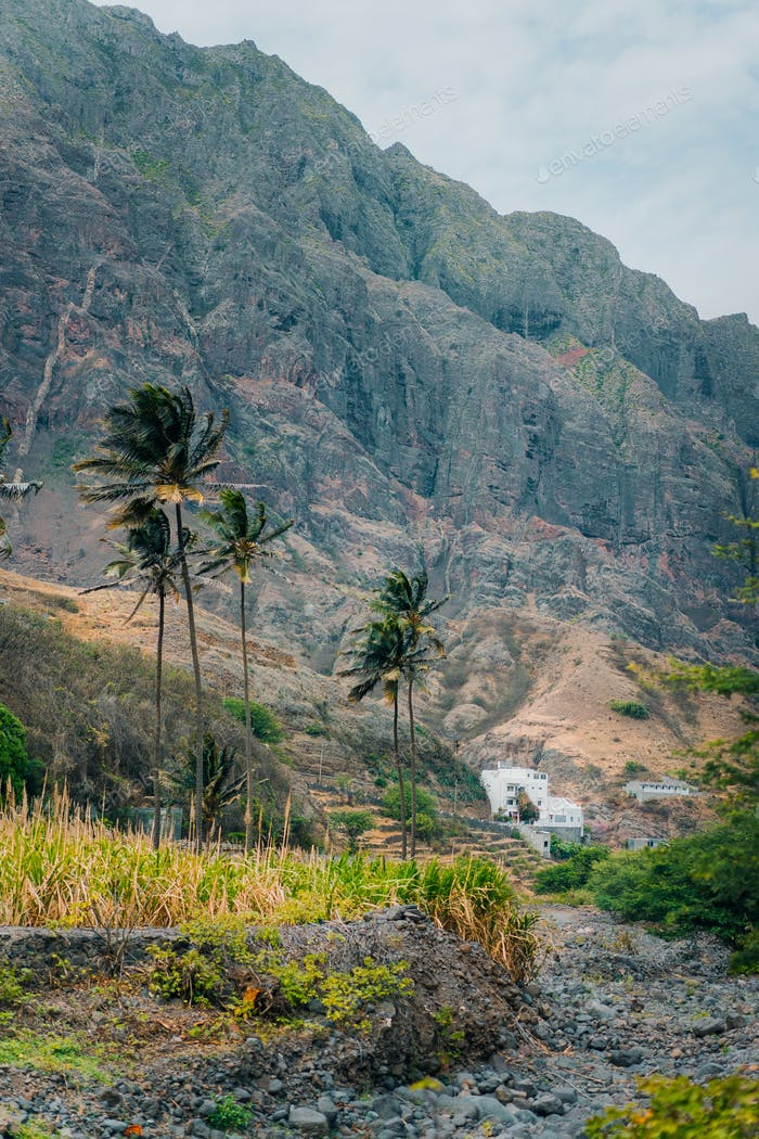 Landscape with palm trees against huge mountains in the Paul Valley, island of Santo Antao, Cape