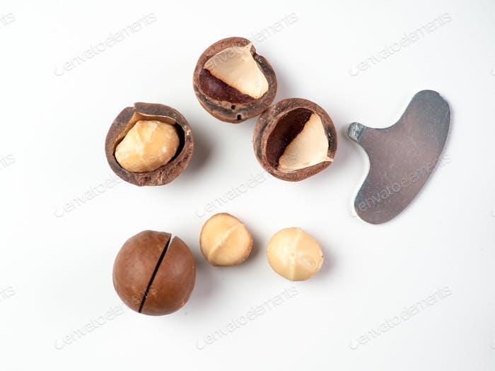 Set macadamia nuts isolated