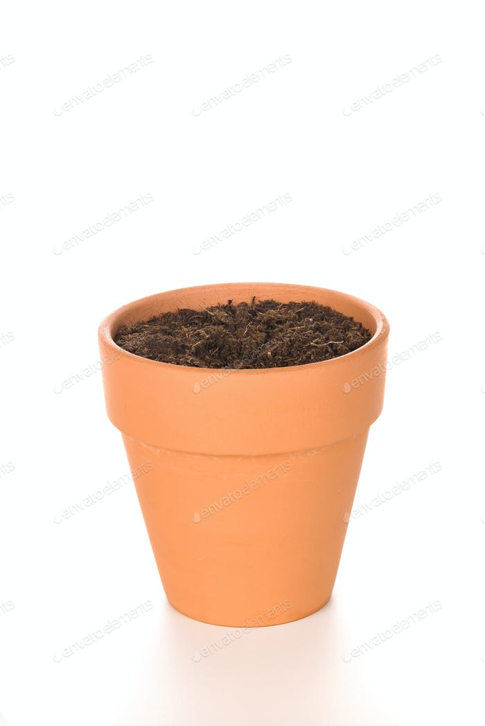 Clay Flower Pot with Soil