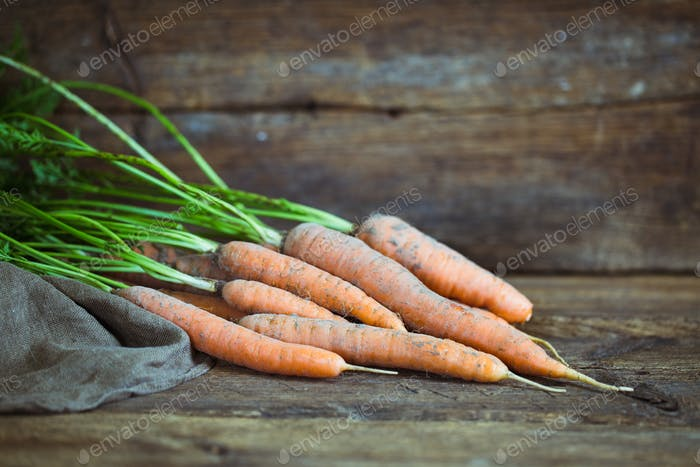fresh carrots bunch on rustic wooden background