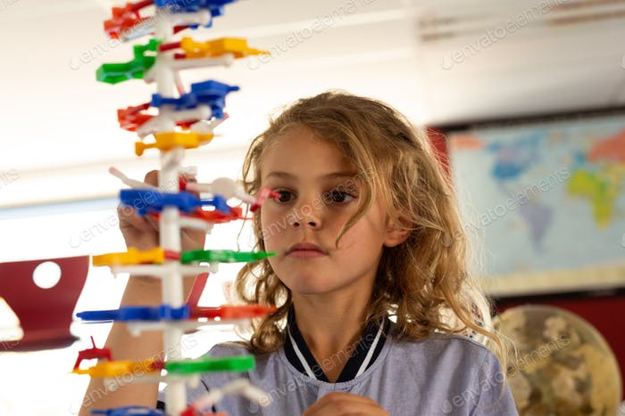 Schoolgirl interacting with a DNA model in classroom at elementary school