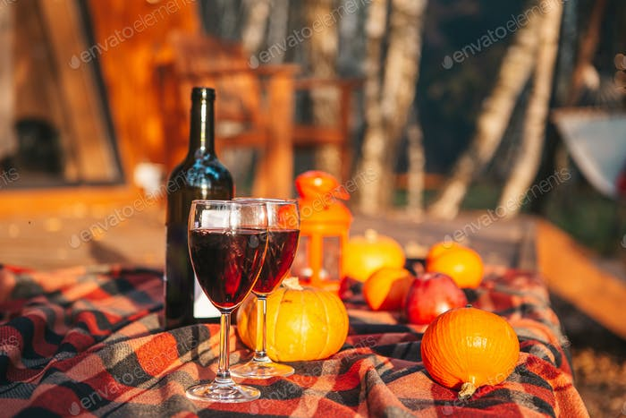 Pumpkins and bottle of red wine with two glasses on the blanket