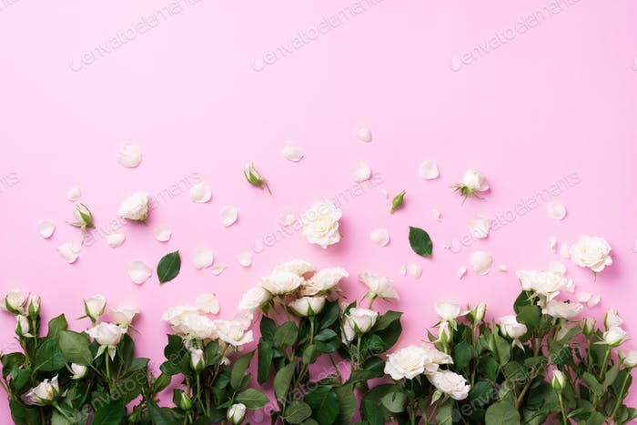 White roses and flowers petals over pink background. Summer and spring composition. Flat lay, top