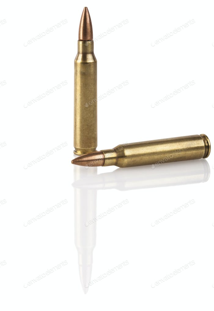 Two Rifle Bullets