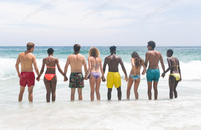 Rear view of diverse group friends standing on beach while holding hand in hand