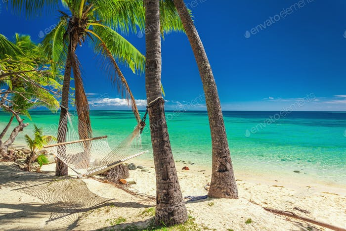 Empty hammock in the shade of palm trees on vibrant tropical Fij