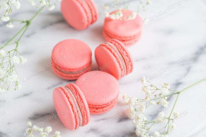 Coral cakes macarons