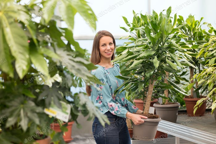 Friendly smiling young woman buying a yucca plant