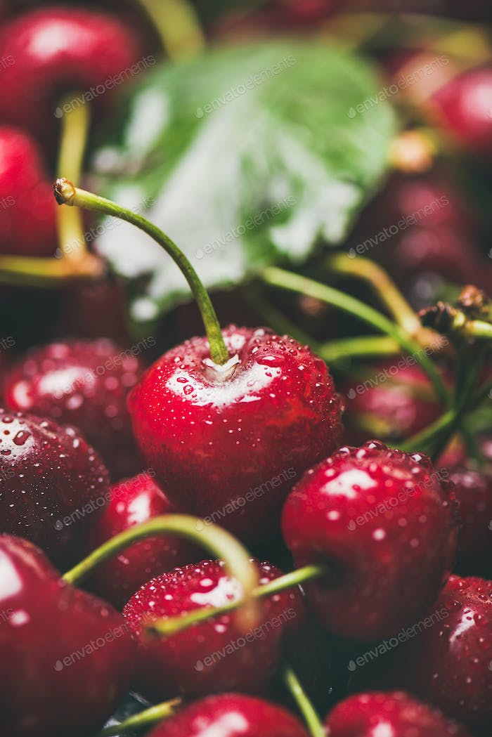 Fresh wet sweet cherries texture, wallpaper and background