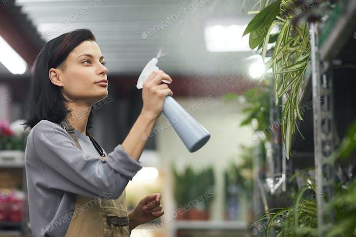 Woman Watering Plants in Flower Shop