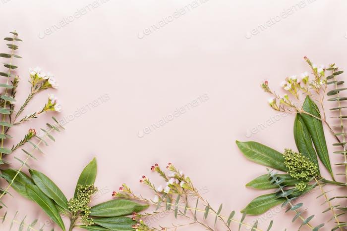 Bio травяная зеленая косметическая композиция, морская соль и косметика ручной работы.