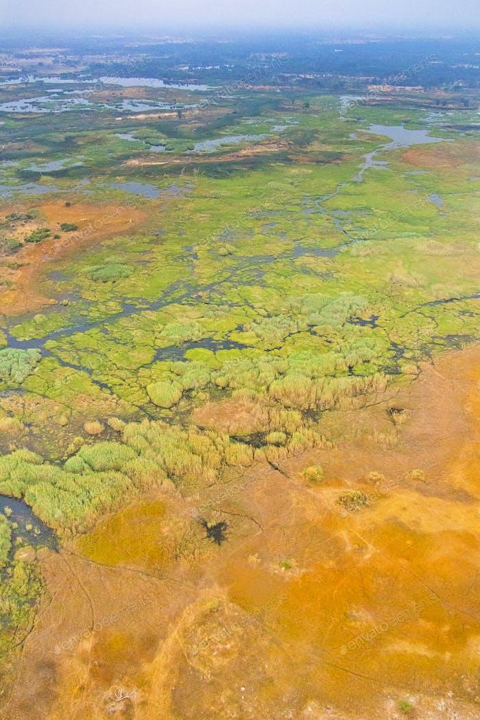 Aerial view, Okavango Delta, Okavango Wetland, Botswana